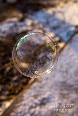Photograph - Soap Bubble  by Jim McCain