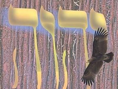 Old Time Feel Digital Art - Soar Like An Eagle by Jamie ian Smith