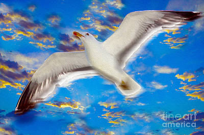 Seagull Mixed Media - Soaring by Jon Neidert