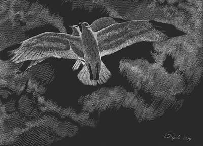 Drawing - Soaring by Lawrence Tripoli