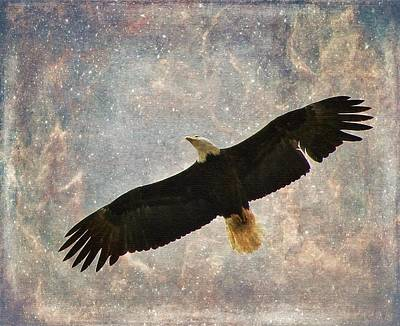 Photograph - Soaring Proudly by Diane Alexander