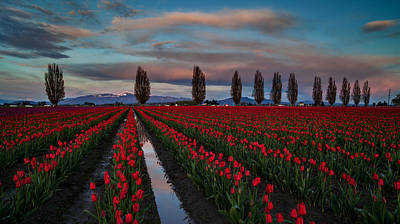 Skagit Photograph - Soaring Skagit Valley Skies by Mike Reid