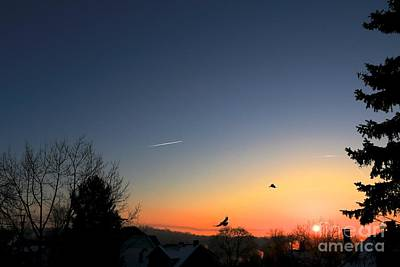 Photograph - Soaring Sunrise 2 by Jay Nodianos