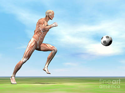 Athletic Digital Art - Soccer Player Musculature Running by Elena Duvernay