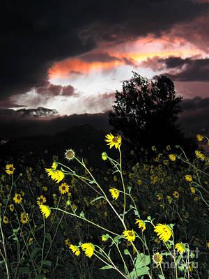 Photograph - Socorro Sunset by Steven Ralser