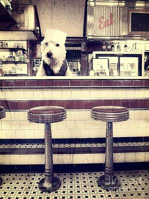 Dog Photograph - Soda Jerk by Edward Fielding