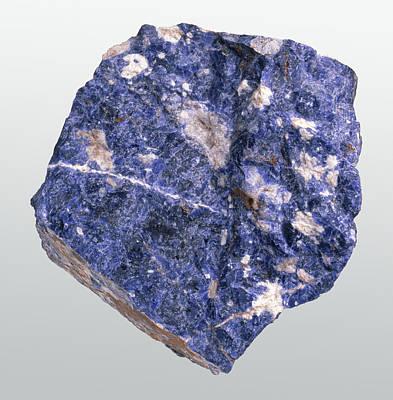 Sodalite Photograph - Sodalite In Rock Groundmass by Dorling Kindersley/uig