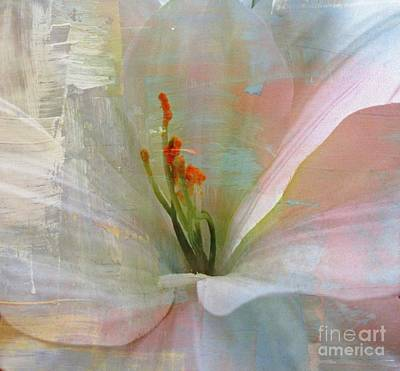 Soft Painted Lily Art Print by Judy Palkimas