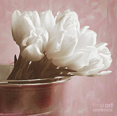 Soft Pink And White Art Print by Billie-Jo Miller