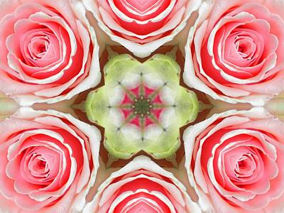 Digital Art - Soft Pink Rose Mandala by Diane Lynn Hix