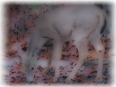 Photograph - Soft Touch Art 1 by Debra     Vatalaro