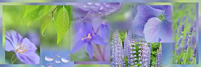 Soft Violet Collage Art Print