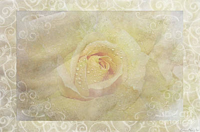 Photograph - Soft Yellow Rose Photoart by Debbie Portwood