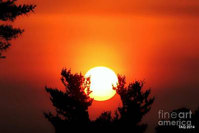 Photograph - Softly As In An Evening Sunset by Tami Quigley