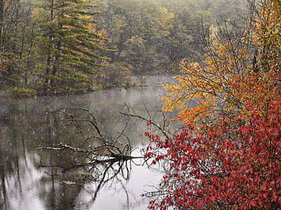 Photograph - Softly Falling by Leda Robertson