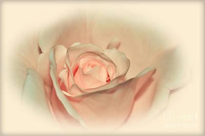 Softly Peach Art Print by Kaye Menner