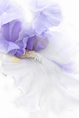 Photograph - Softness Of A Lavender Iris Flower by Jennie Marie Schell
