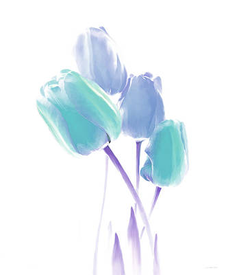 Photograph - Softness Of  Blue And Teal Tulip Flowers by Jennie Marie Schell