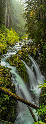 Photograph - Sol Duc Falls by Burland McCormick