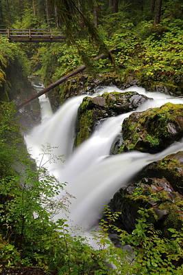 Photograph - Sol Duc Falls by David Andersen
