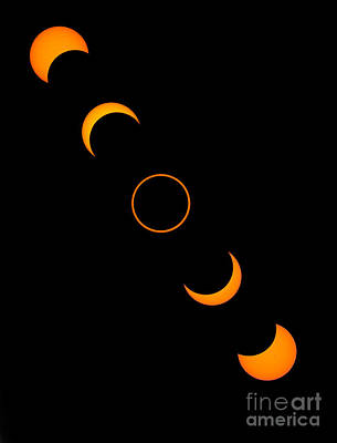Photograph - Solar Annular Eclipse by Francois Gohier