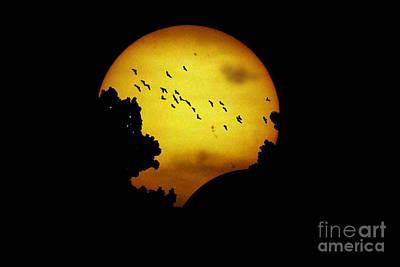 Solar Eclipse On 05-20-2012 Art Print by John Chumack