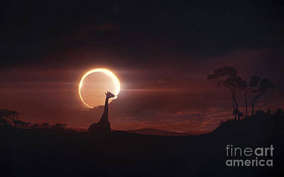 Solar Eclipse Over Africa Print by Tobias Roetsch