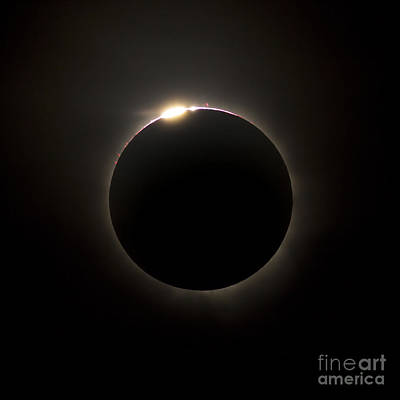 Solar Eclipse With Prominences Art Print by Philip Hart