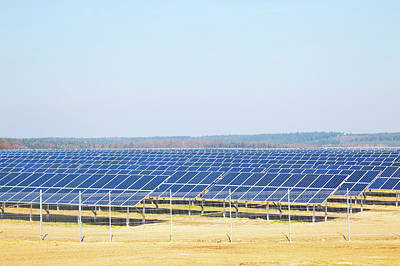 Solar Farm Art Print by Wladimir Bulgar