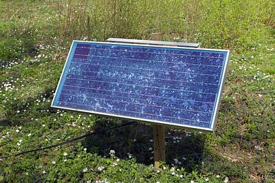 Norfolk Wall Art - Photograph - Solar Panel by Dr Jeremy Burgess/science Photo Library