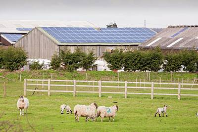Solar Panel System Print by Ashley Cooper