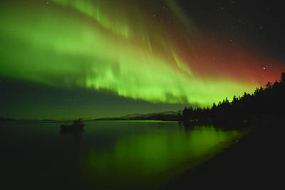 Aurora Borealis Photograph - Solar Storm by Ted Raynor