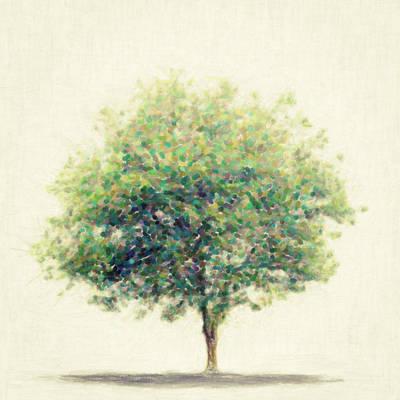 Painting - Soledad by Taylan Apukovska