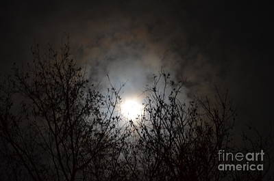 Photograph - Solemn Winter's Moonlight by Maria Urso