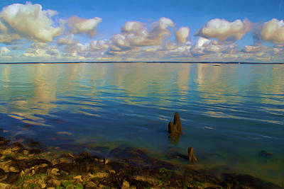 Art Print featuring the digital art Solent by Ron Harpham