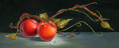 Flower Painting - Solitary Apples by Doreta Y Boyd