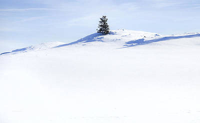 Snow Landscapes Photograph - Solitary by Theresa Tahara