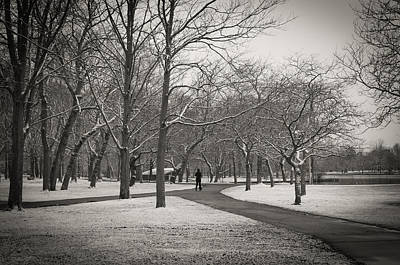 Belmont Lake State Park Wall Art - Photograph - Solitude by Andrew  Craig