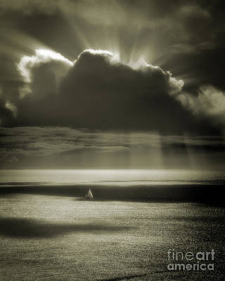 Photograph - Solitude by Edmund Nagele