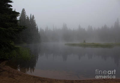 Photograph - Solitude In Algonquin by Barbara McMahon