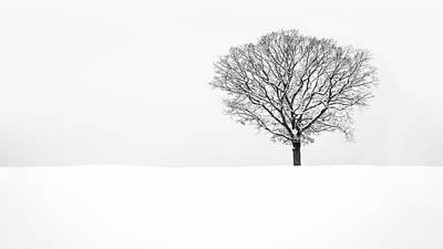 Photograph - Solitude by Mihai Andritoiu