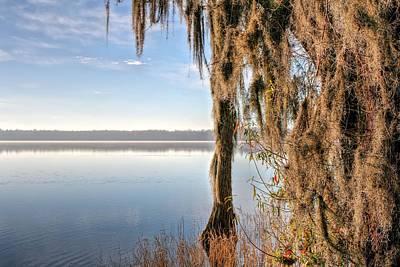 Solitude On Lake Jackson  Print by JC Findley