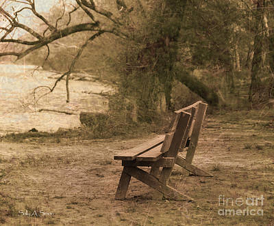 Photograph - Solitude by Sally Simon