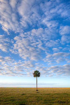 Florida State Wall Art - Photograph - Solitude by W Chris Fooshee