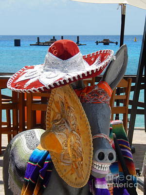 Photograph - Sombreros The Donkey And The Sea by Michael Hoard