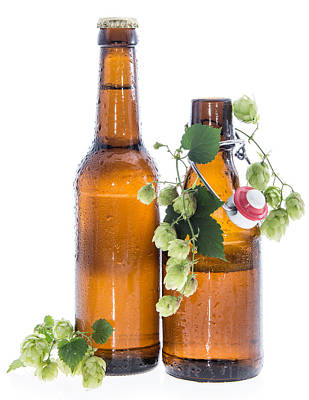 Some Bottles Of Beer With Hops On White Art Print