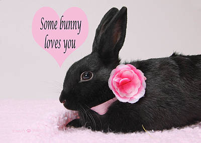 Photograph - Some Bunny Loves You  by Kimber  Butler