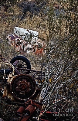 Photograph - Some Ford In The Weeds by Lee Craig