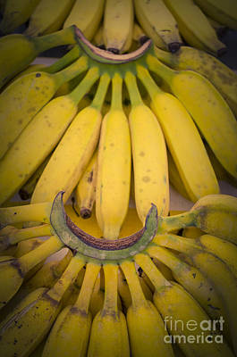 Photograph - Some Fresh Bananas On A Street Fair In Brazil by Ricardo Lisboa