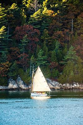 Somes Sound Sail Art Print